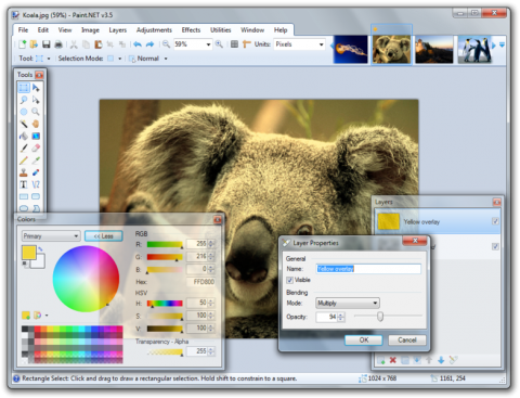 Paint.Net Screenshot